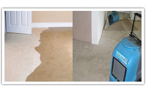 drying wet carpets
